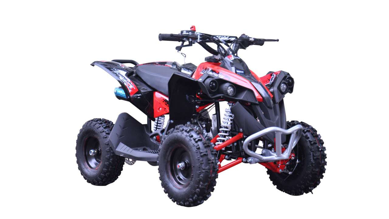 QUAD RENEGADE 110