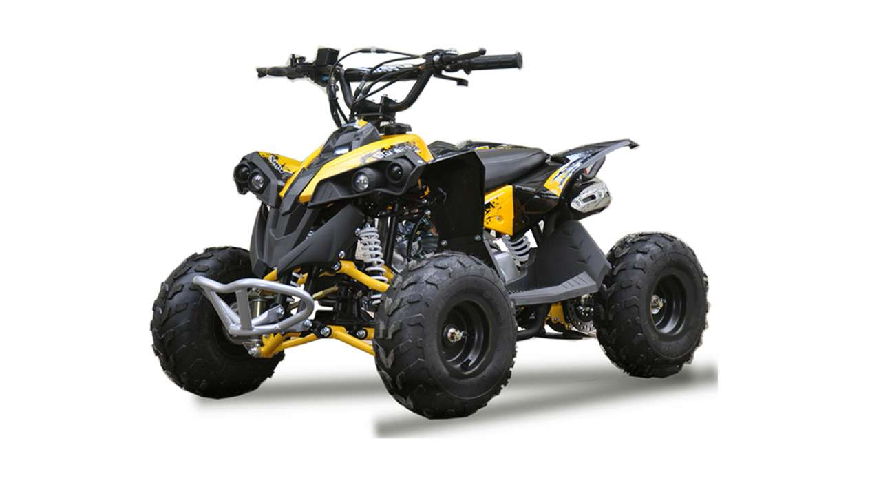 QUAD RENEGADE